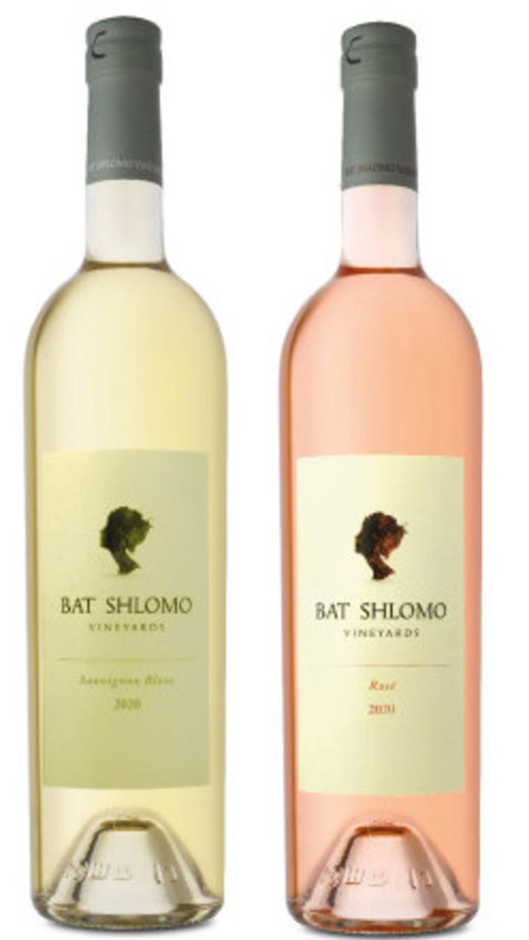יינות בת שלמה (צילום: איל קרן)