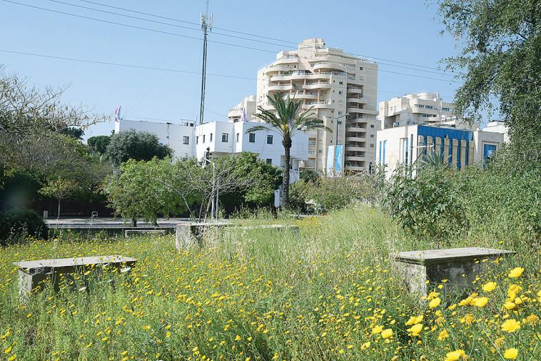 בית הקברות שייח מוראד (צילום: אבשלום ששוני)