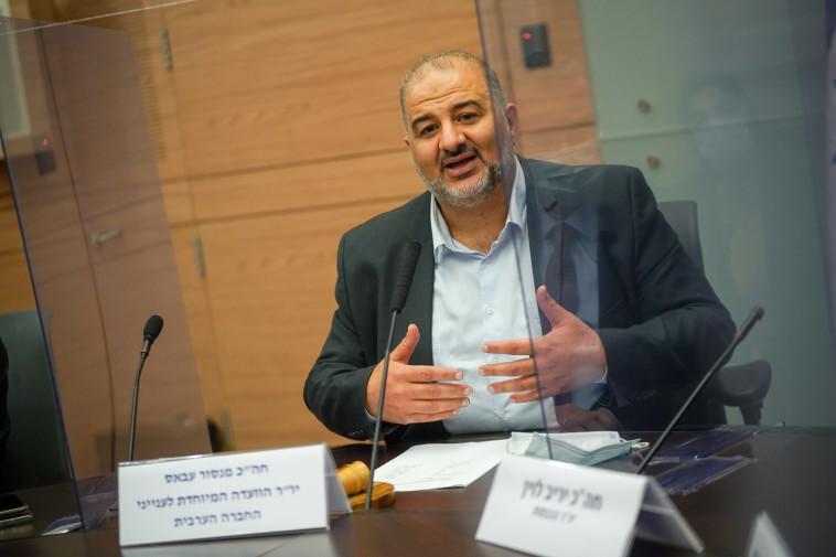 מנסור עבאס בוועדה המיודת לענייני החברה הערבית (צילום: דוברות הכנסת, נועם מושקוביץ)