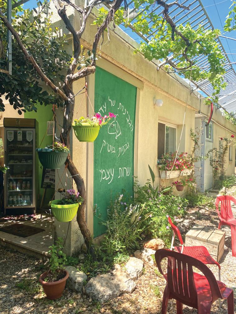 Un lugar en el corazón (Foto: Meital Sharabi)