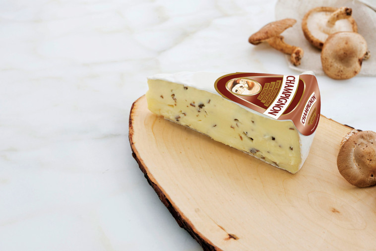 גבינת ברי גורמה רכה עם עובש לבן ושבבי פטריות שמפיניון (צילום: יח''צ חו''ל)