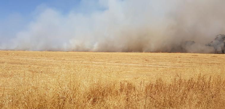שריפות בעוטף עזה (צילום: משה ברוכי סייר ביערות קק״ל)