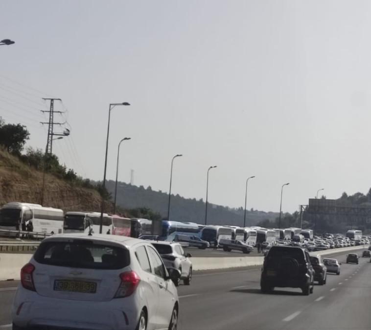 שיירת האוטובוסים שנעצרה בכביש 1 (צילום: גלעד היימן)