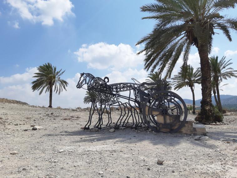 גן לאומי תל מגידו (צילום: שרית פלאצי מיארה)