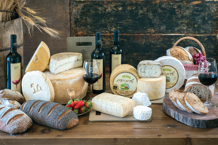 גבינת שיירת רועים (צילום: אנטולי מיכאלו)