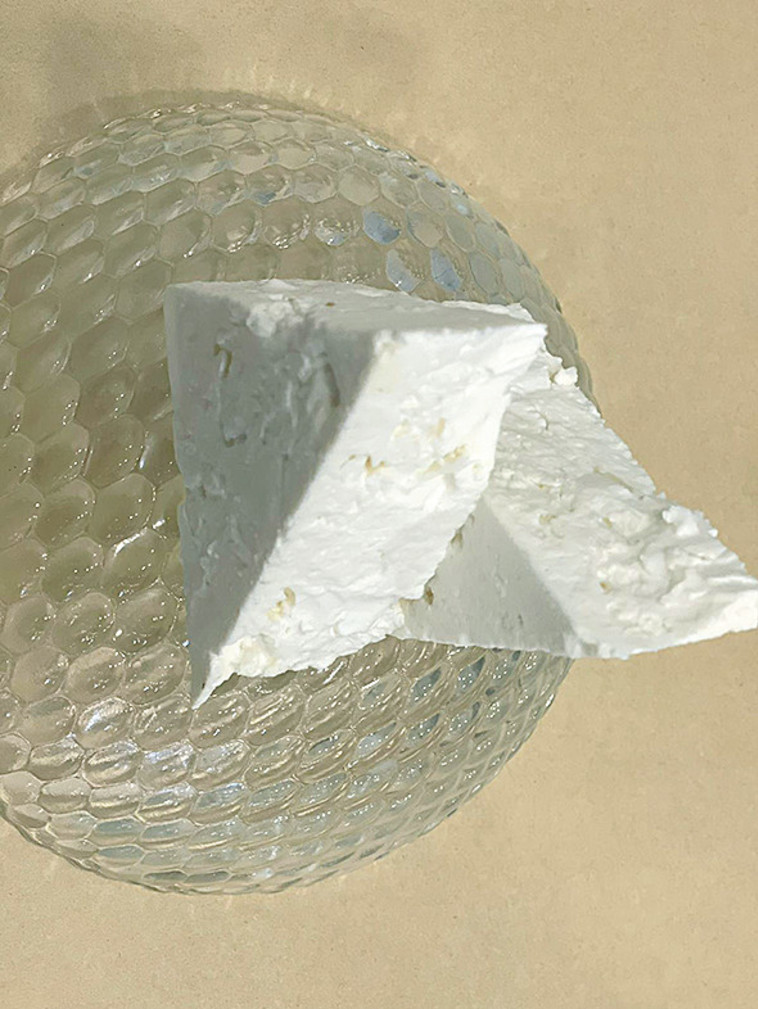 גבינה בולגרית (צילום: אליאס מטר)