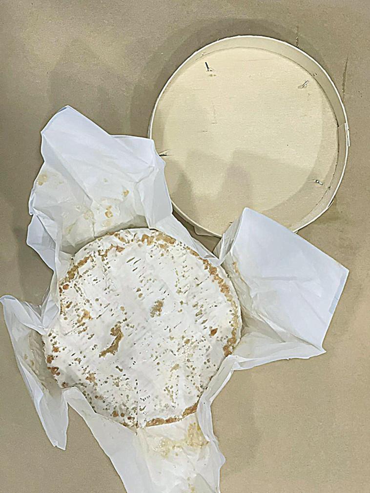 גבינת קממבר (צילום: אליאס מטר)