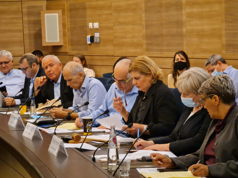 Discussion in the Foreign Affairs and Defense Committee (Photo: without credit)