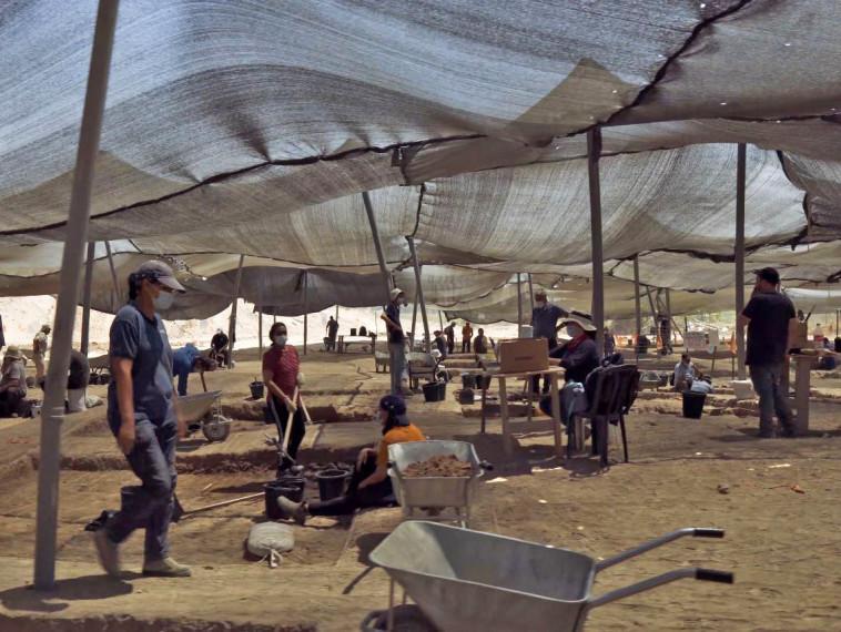 חפירת רשות העתיקות ביבנה (צילום: אמיל אלג'ם, רשות העתיקות)
