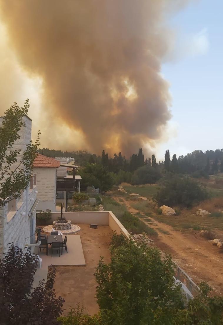 השריפה סמוך לנווה אילן (צילום: דני זקן)
