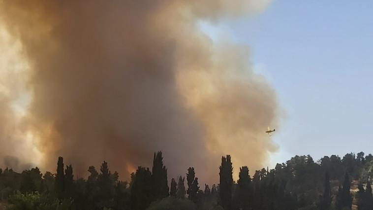 השריפה בהרי ירושלים (צילום: דני זקן)