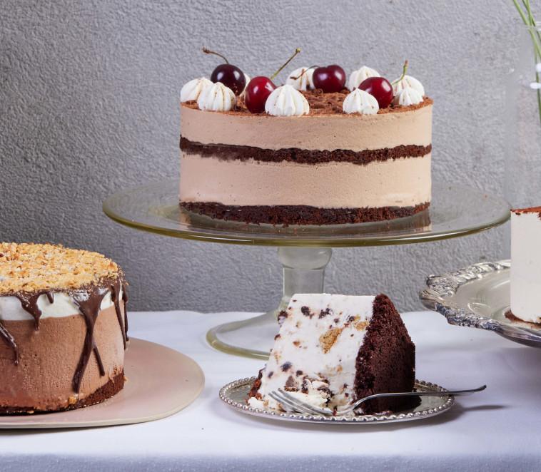 עוגות הגלידה של שטפן (צילום: יהונתן בן חיים)