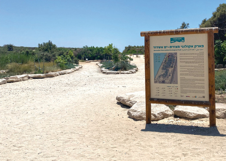 Ecological Park-Ashdod (Photo: Meital Sharabi)
