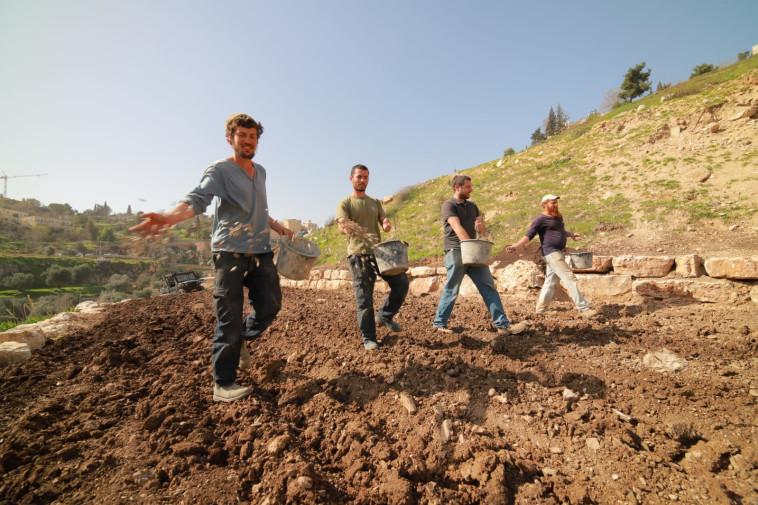 חוויה חקלאית בחווה בגיא (צילום: קובי הראתי, עיר דוד)