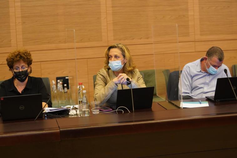 ד''ר שרון אלרעי-פרייס בדיון בוועדת החוקה (צילום: דני שם טוב, דוברות הכנסת)