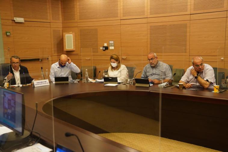 הדיון בוועדת החוקה (צילום: דני שם טוב, דוברות הכנסת)