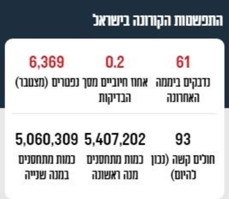 Corona data in Israel (Photo: Maariv Online)