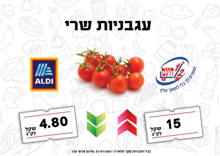 מחירי עגבניות שרי בישראל  (צילום: ללא)