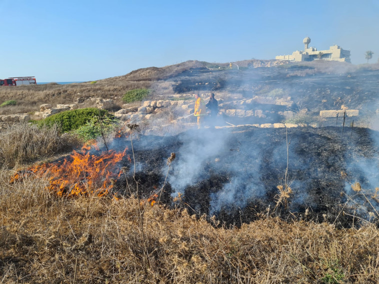 שריפה בחיפה (צילום: דוברות כבאות והצלה)