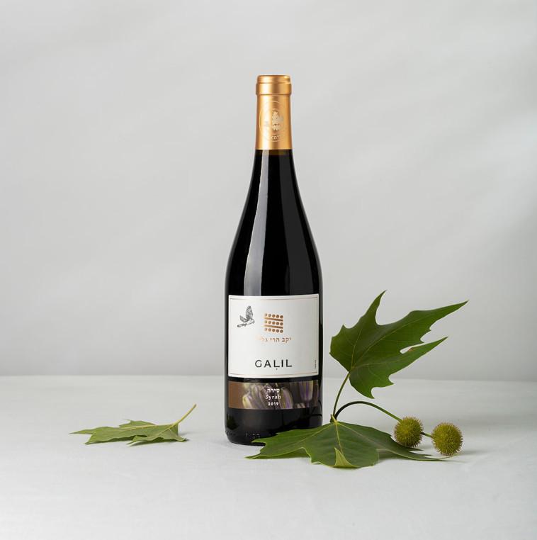 הרי גליל יינות 2018 (צילום: סטודיו דדאלוס)