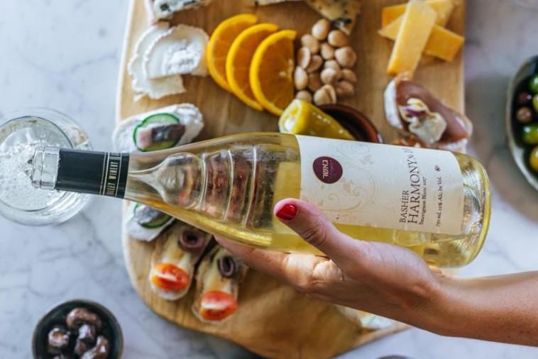 פסטיבל יין סינמה סיטי באר שבע (צילום: יחצ)