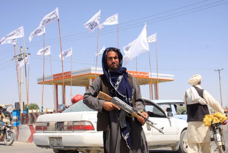 לוחם טליבאן בגאזני, אפגניסטן (צילום:  REUTERS/Stringer)