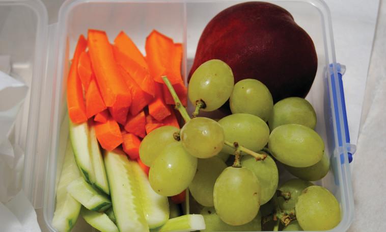 פירות  (צילום: פרטי)