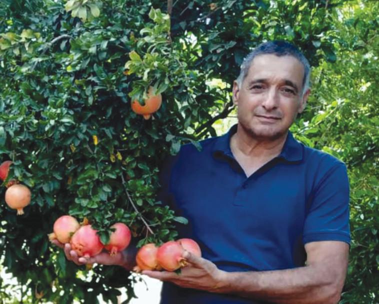 ירון בלחסן (צילום: ארגון מגדלי הפירות בישראל)