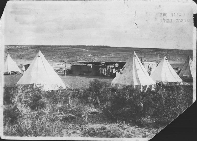 המחנה בגבעת הכיבוש נהלל (צילום: ארכיון נהלל)