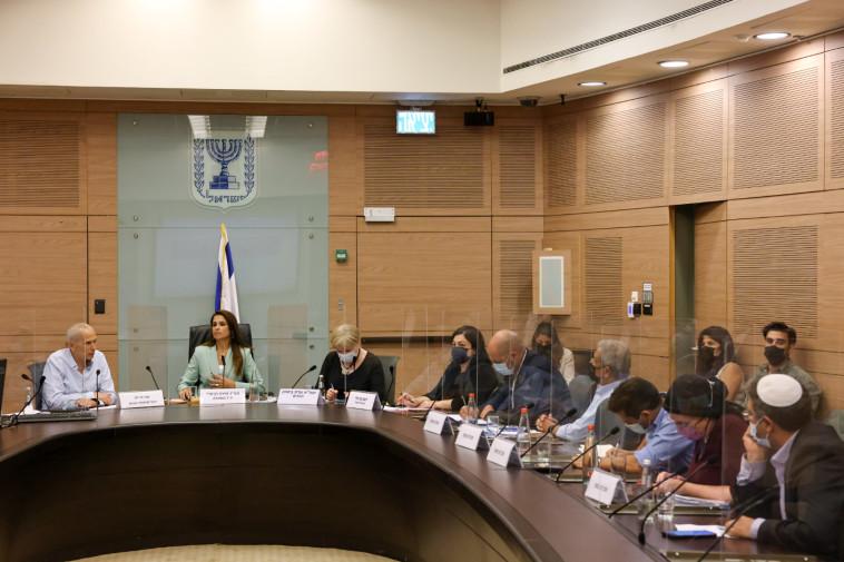 הוועדה לביטחון פנים (צילום: נועם מושקוביץ)