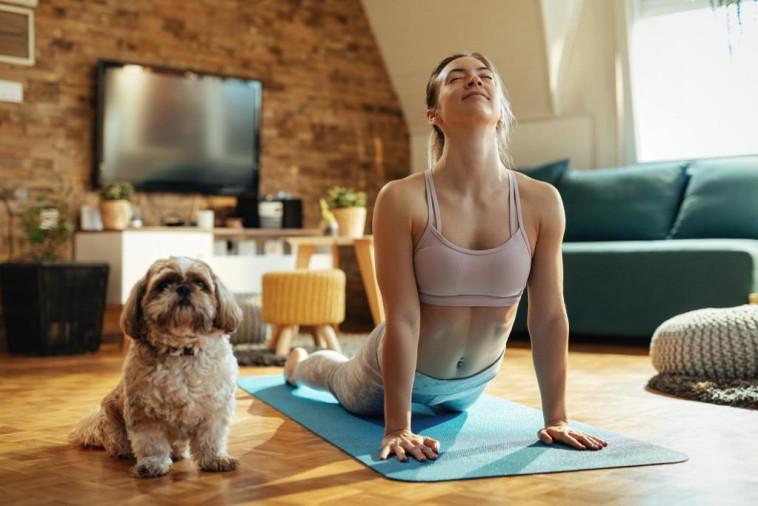 יוגה עם הכלב (צילום: באדיבות אורבן צ'ויס)