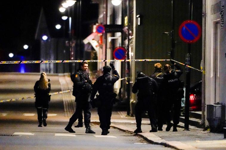 זירת האירוע בנורבגיה  (צילום: Hakon Mosvold/NTB/via REUTERS)