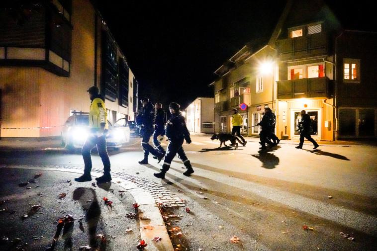 חיפוש אחר חשודים נוספים (צילום: Hakon Mosvold/NTB/via REUTERS)
