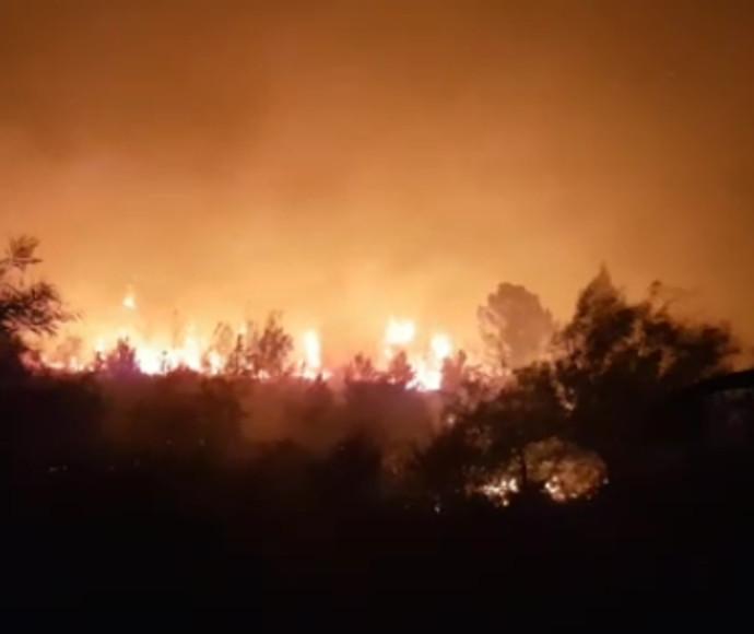 שריפה ליד נווה שלום