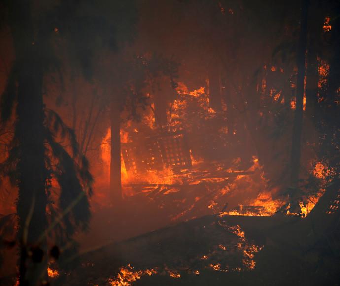 השריפה בחיפה