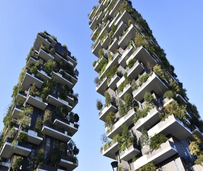 """צמחייה אורבנית, חברת """"green wall"""""""