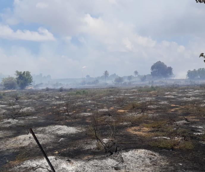 השריפה בשמורת הטבע כרמיה
