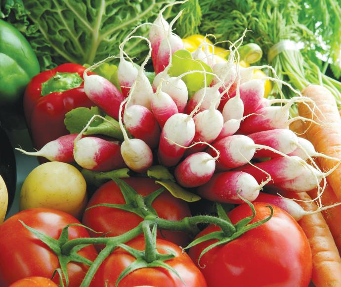 ירקות אורגניים, אילוסטרציה