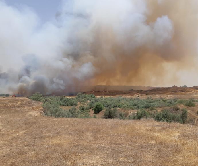 שריפה כתוצאה מבלון תבערה ביער כיסופים