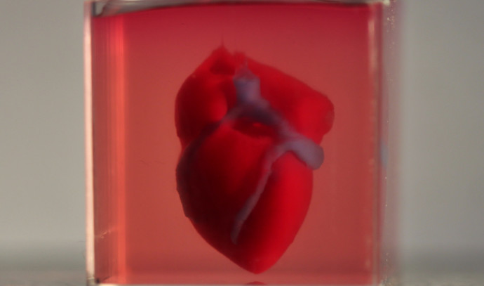 הדפסה תלת ממדית של לב אנושי בקנה מידה קטן מחומרים ותאים אנושיים.
