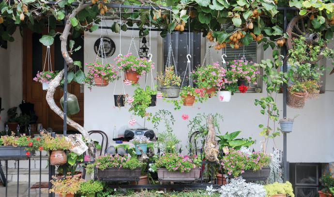 דירת גן