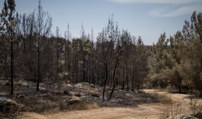 נזקי השריפה סמוך למבוא מודיעים