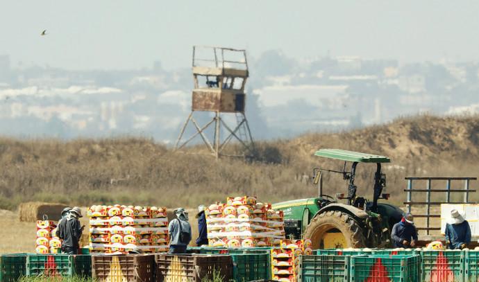 חקלאים בעוטף עזה