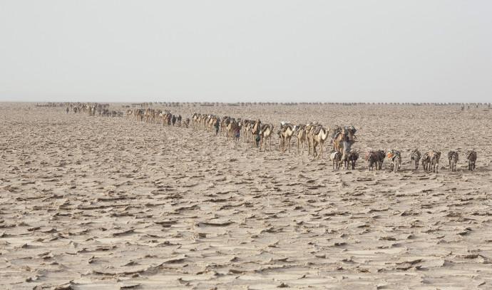 מדבר דנקיל באתיופיה, ארכיון
