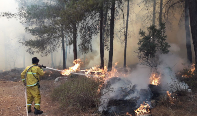 שריפה ליד בית שמש