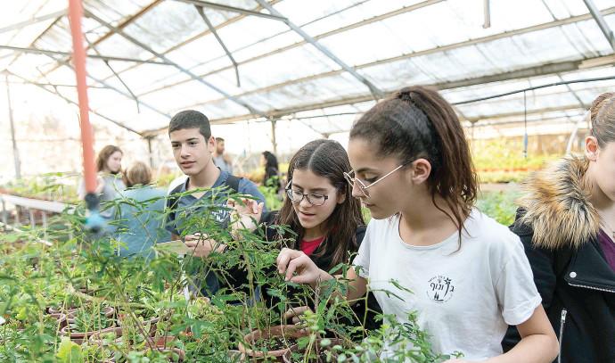 לימודי רפואת צמחי מרפא בויצו גם ונוף