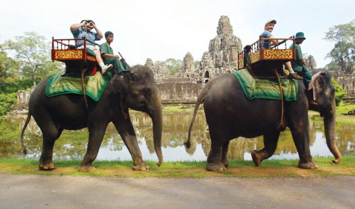 פילים באנגקור