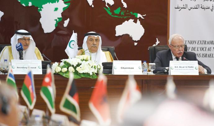 שר החוץ הפלסטיני ריאד אל-מאלכי