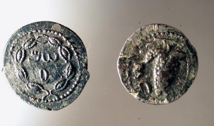 מטבעות עתיקים שימשו השראה ללוגו האזורי