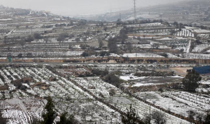 שלג בגוש עציון